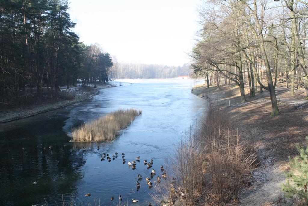 Przetarte szlaki – luty cz. 2