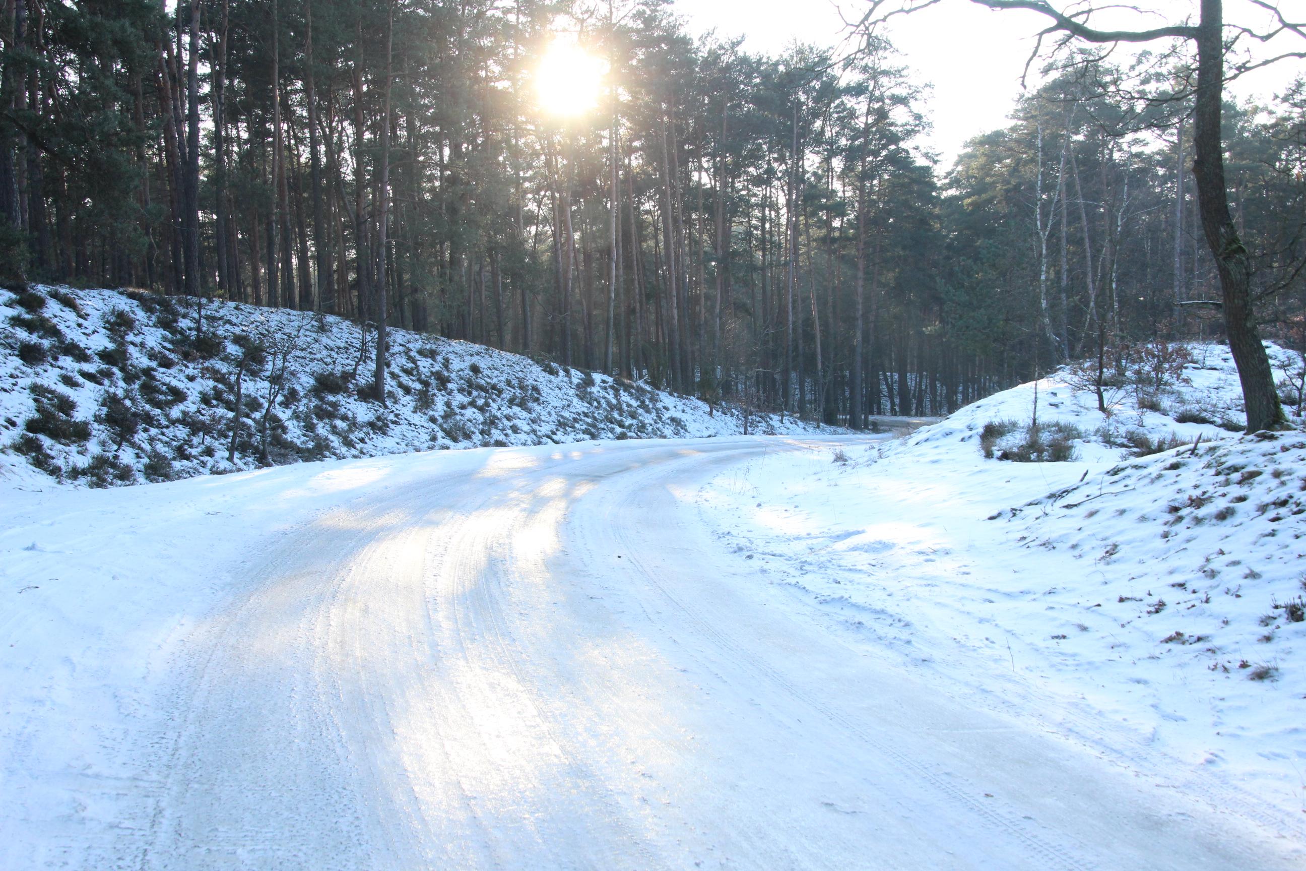 Przetarte szlaki w styczniu 2017.